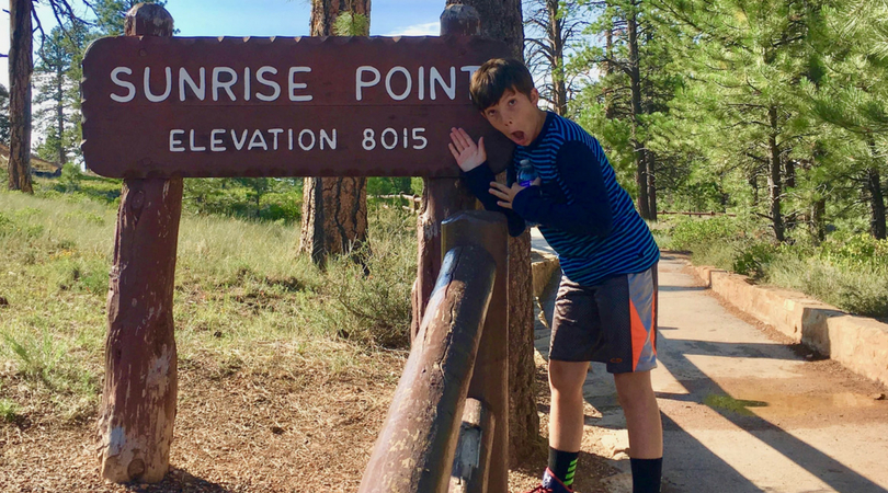 Ultimate Southwest Road Trip
