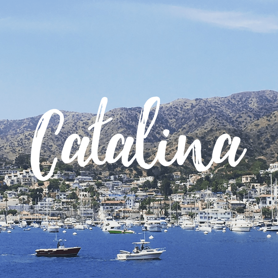 Catalina Day Trip Itinerary